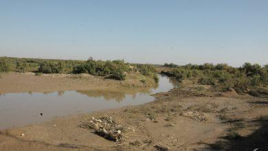 "Photo of روستای زابلی نشین ""وحدت"" سد وشمگیر تنها یک نمونه است!"